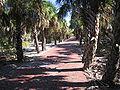 Florida- 1699 Egmont Key.JPG