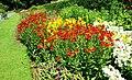 Flower beds, Botanic Gardens, Belfast (2) - geograph.org.uk - 889066.jpg