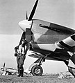 Flying Officer J R Cullen of No. 486 Squadron RNZAF, standing in front of his Hawker Tempest Mk V at Castle Camps, Cambridgeshire, 8 April 1944. CH13967.jpg