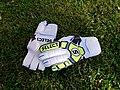 Football goalkeeper gloves Select 34.jpg