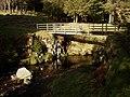 Footbridge at Fairhaugh. - geograph.org.uk - 382214.jpg