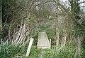Footbridge over boundary ditch - geograph.org.uk - 1238184.jpg