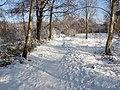 Footpath, Bisley Common - geograph.org.uk - 1655955.jpg