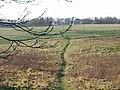 Footpath to Sheperdswell - geograph.org.uk - 633986.jpg