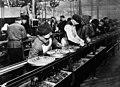 Ford assembly line - 1913.jpg