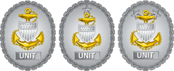Former USCG Unit Command CPO Identification Badges.png