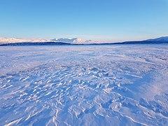 Frozen Torneträsk.jpg