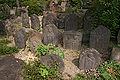 Fukuchiin Nara05n3200.jpg