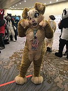 Furnal Equinox 2018 IMG 0154 Pip.jpg