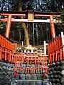 Fushimi Inari mini torii.jpg
