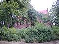 Górujący nad miastem gotycki zamek - widok od ulicy Słowackiego - panoramio.jpg