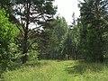 G. Miass, Chelyabinskaya oblast', Russia - panoramio (39).jpg