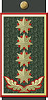 GAF General