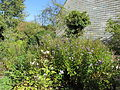 Garten Haus Hövener Brilon 3.jpg