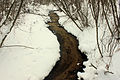 Gfp-wisconsin-mirror-lake-state-park-stream-in-the-winter-time.jpg