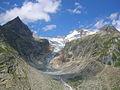 Ghiacciaio di Pré de Bard Val Ferret DSCN8810.JPG