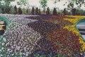 Glasgow Garden Festival - Flowerbed plantings.pdf