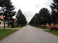 Glavna Ulica Erdevik, Lenjinova ulica, April,2012..jpg