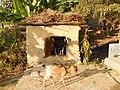 Goat House.jpg