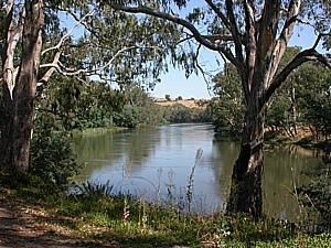 Goulburn River - Middle reaches of the Goulburn, near Seymour