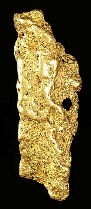 Yuba River - Large gold nugget from the Yuba River placers, weight 182 g.