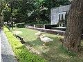 Gooses at Constitution Club, New Delhi.jpg
