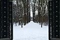 Grünes Lusthaus Winter 2013 002.jpg