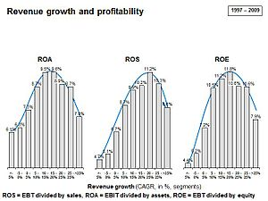 Sustainable growth rate - Image: Graf 2 profitability