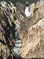 Grand Canyon of the Yellowstone-Wyoming-USA.JPG
