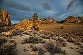 Granite Mtns Wilderness CA.JPG