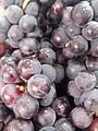 Grapes of Tamil Nadu.jpg