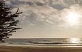 Gray Whale Cove State Beach (15676295329).jpg