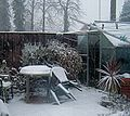 Greenhouses in the snow.jpg