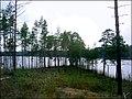 Gulbis - panoramio.jpg