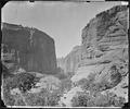HEAD OF CANYON DE CHELLE, LOOKING DOWN WALLS 1200 FEET IN HEIGHT, ARIZONA - NARA - 524271.tif