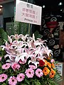 HK CWB Causeway Bay Jardine's Bazaar April 2021 SS2 07.jpg