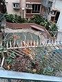HK SW 上環 Sheung Wan 普義街 Po Yee Street near 磅巷 Pound Lane 普慶坊 Po Hing Fong near 卜公花園 Blake Garden February 2020 SS2 05.jpg