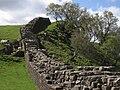 Hadrian's Wall with sheep 1.jpg