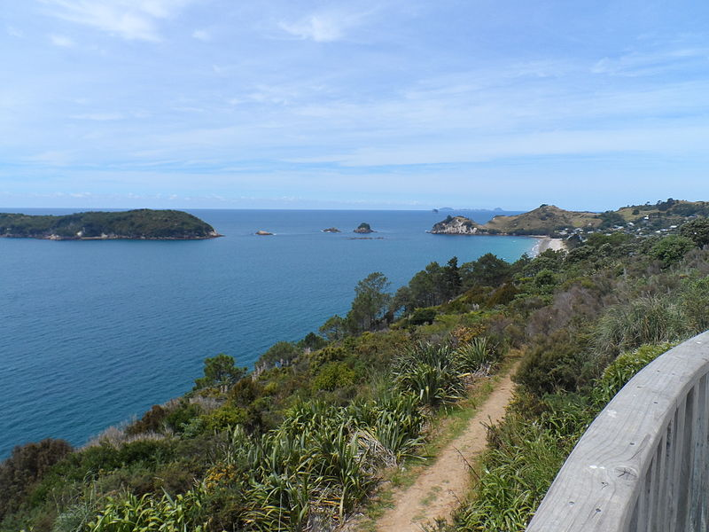 Hahei Beach from Cathedral Cove carpark