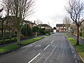 Hale - Tintern Drive - geograph.org.uk - 1134212.jpg