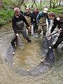 Hauling in the seine (4949008346).jpg
