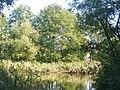 Heiligensee - Erlengrabenteich - geo.hlipp.de - 41541.jpg