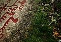 Helleristning - panoramio.jpg