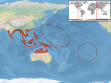 Hemidactylus frenatus distribution.png