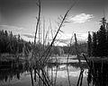 Hidden Lakes, Whitehorse, Yukon (15427179267).jpg