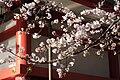 Hie Shrine in Nagatachō, Tokyo, Japan - IMG 5225.JPG