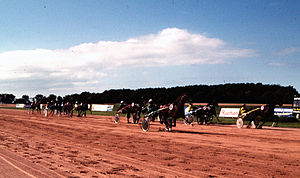 La Glacerie - The racecourse