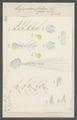 Hippopodius luteus - - Print - Iconographia Zoologica - Special Collections University of Amsterdam - UBAINV0274 110 13 0020.tif