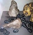 Homo erectus (fossil hominid skull) & indochinite tektites (Pleistocene; southeastern Asia) 5 (31714236288).jpg