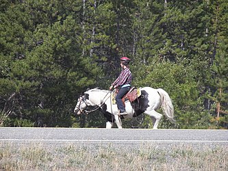 Horse riding at Spirit Lake Wilderness Resort, Yukon.jpg